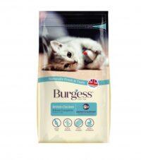 بيرغيز غذاء للقطط الصغيرة بالدجاج 1.5 كغم