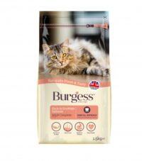 بيرغيز غذاء للقطط البالغة بالسلمون الاسكتلندي 1.5 كغم