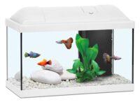 أكوا أتلانتس حوض الأسماك للاطفال لون ابيض