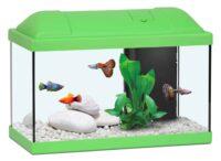 أكوا أتلانتس حوض الأسماك للاطفال لون اخضر