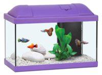 أكوا أتلانتس حوض الأسماك للاطفال لون بنفسجي